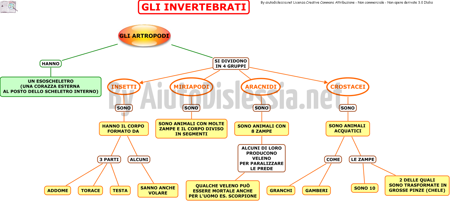 02. GLI INVERTREBRATI PART 1