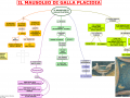 18. IL MAUSOLEO DI GALLA PLACIDA
