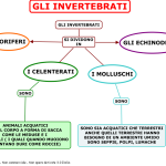 03. GLI INVERTREBATI PART 2